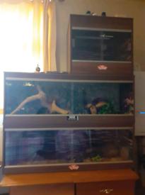 2x large vivexotic vivariums 1x small 2ft viv