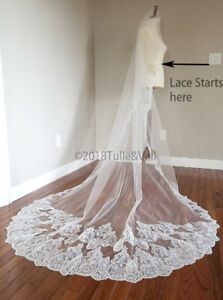 Cathedral lace veil, new.