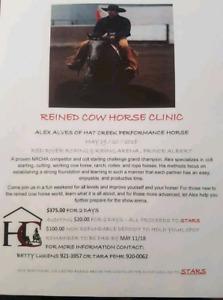 Reined cowhorse & horsemanship clinic