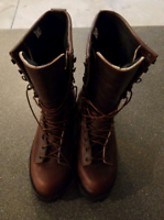 Danner Boots Size 10.  NEW.