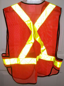 Safety Helmet MSA Super V and PIO Safety Vest and Glasses Set London Ontario image 3