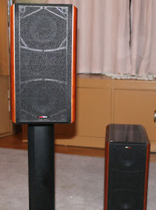 Polk Audio Speaker System/Amplifier