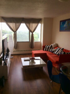 1 Bdrm Dog+Cat Friendly Apt. Available Sept 1st!