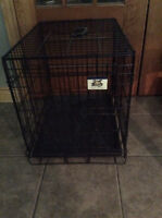 Pet Lodge Dog Crate/Cage With Bottom Tray - St. Thomas