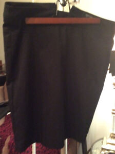 NWT Size 6 Ladies Skirt with Lining