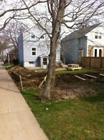 TREE CUTTING & REMOVAL