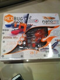 Hex bugs race way