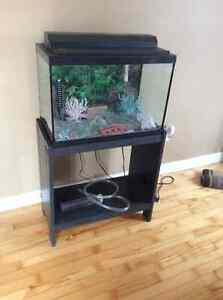 20 gallon fish tank with stand, heater and accessories