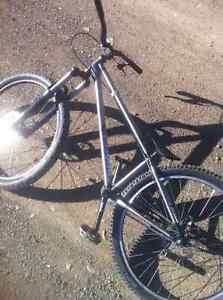 Norco Two50