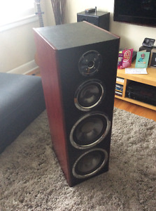 Ultra Linear Tower Speakers