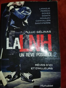 La LNH un rêve possible 2 - Luc Gélinas