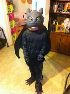"How to train a dragon costume. ""Toothless"""