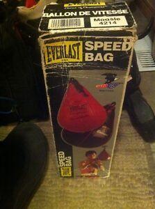 Everlast speed bag