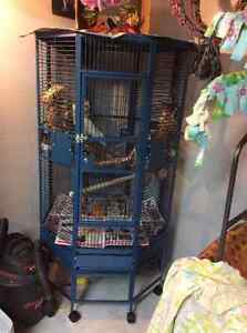 brand new cage for sale.