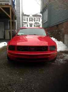 2007 Ford Mustang V6 Pony Coupe (2 door)
