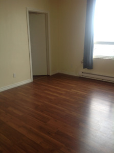 Beautiful Large One Bedroom Apartment