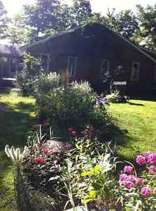 Waterfront Cottage Home Acreage - Bull Lake, Arden Kingston Kingston Area image 2
