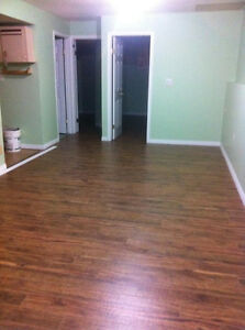 TWO BEDROOM BI-LEVEL Walkout BASEMENT FOR RENT