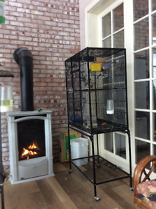 Great deal on cage and finches !