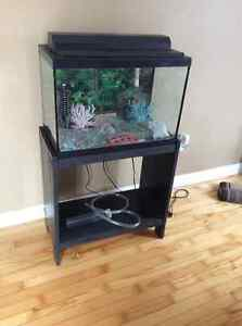 20 galllon fish tank with stand
