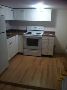 Newly Renovated Two Bedroom Basement Apt Dartmouth