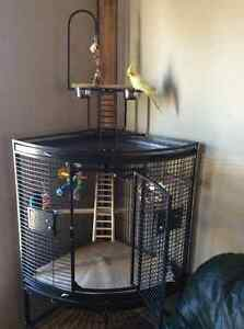 BIRD CORNER CAGE (HIGH QUALITY)