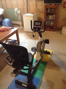 nordic rider dual motion exercise machine