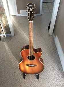 Gorgeous Guitar