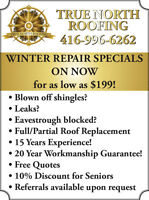 Winter Ice Storm Repair Specials as low as $179