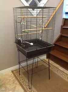 Selling Birds Cage