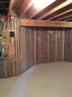 Carpenters & Certified Mould inspector for Carpentry & Reno's