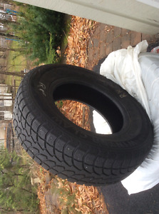 WinterClaw Extreme Grip tires
