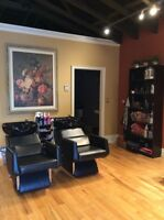 Hairdresser, Massage Therapist, Esthetician Rooms for Rent