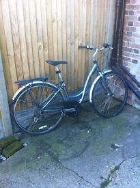 Adult bicycle £100