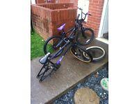 2 bmx stunt bikes