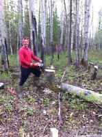 Cheapest Firewood $150/cord cell: 6043752715
