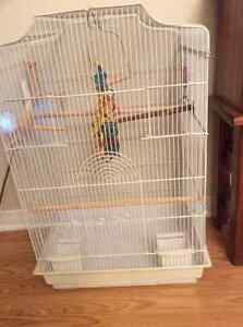 Bird cage/Cover & accessories in Excellent Condition