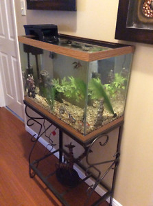 20 gallon fish tank with stand and lots of accessories