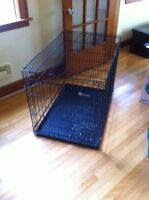 Large wire kennel