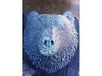 Stunning bears head.