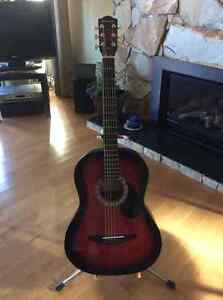 Johnson Acoustic guitar and extras