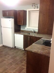 Spacious New 1 Bedroom Apt for March 1st