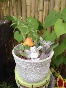 Fairy Garden Supplies $100/all