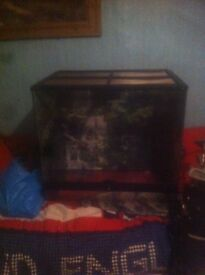 Glass reptile tank