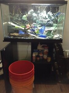 Fish tank 35/40 gallons