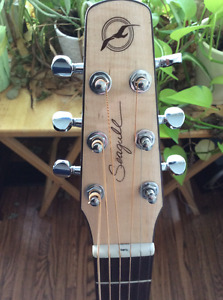 Acoustic Electric Performer CW Flame Top Spruce