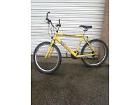 Mens Raleigh Max Bike