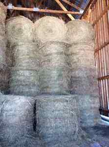 Barn stored meadow hay for sale
