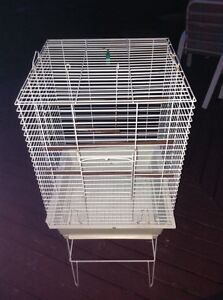 Big birds cage for 50$  for 36 birds