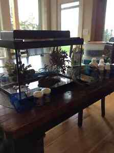 "10 gallon Fish tank 20""x 10"" x 12"" with cover and light"